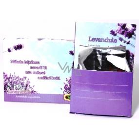 Albi Minizahrádka Levandule krabička dárkové balení sady na pěstování