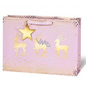 BSB Luxusní vánoční dárková papírová taška 23 x 19 x 9 cm VDT 422 - CD