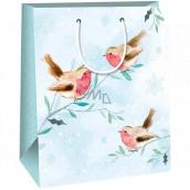 Ditipo Dárková papírová taška 26,4 x 13,6 x 32,7 cm světle modrá ptáčci