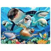Prime3D pohlednice - Selfie pod vodou 16 x 12 cm