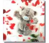 Albi Čokoláda 3D Me To You Plátky růží 90 g