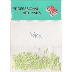 Professional Art Nails ozdoby na nehty hvězdičky světle zelené 1 balení