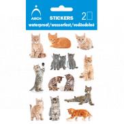 Arch Voděodolné dekorační samolepky Kočičky 9,5 x 6,5 cm