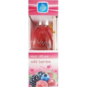 Pan Aroma Reed Diffuser Wild Berries osvěžovač vzduchu difuzér 50 ml