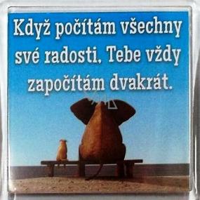 Nekupto Veselé magnetky 022 Když počítám všechny své radosti, Tebe vždy započítám dvakrát 6 x 6 cm