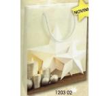 Nekupto Dárková papírová taška střední 23 x 18 x 10 cm Vánoční 1203 02 WBM