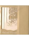 Nekupto Přání k Vánocům prostorové Vánoční 175 x 110 mm, 3309 Y