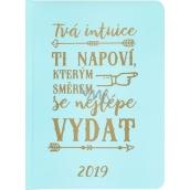 Albi Diář 2019 týdenní Intuice - mátový s textem 12,6 x 17 x 1,2 cm