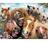 Prime3D plakát Koně - Selfie 39,5 x 29,5 cm