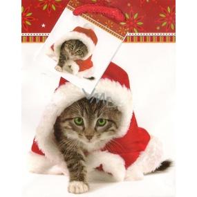 Nekupto Dárková papírová taška malá 911 30 WBS Vánoční kočka 14 x 11 x 6,5 cm