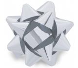 Nekupto Hvězdice střední metal stříbrná 6,5 cm HX 127 02