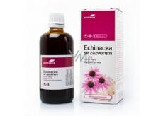 Aromatica Echinaceové bylinné kapky se zázvorem na obranyschopnost, imunitu, protizánětlivě, dýchací cesty 100 ml