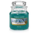 Yankee Candle Icy Blue Spruce - Zledovatělý modrý smrk vonná svíčka Classic malá sklo 104 g