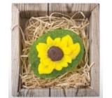 Bohemia Natur Slunečnice ručně vyráběné toaletní mýdlo v krabičce 60 g