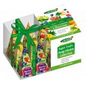 Liran Vánoční balení Ovocné čaje v pyramidkách 12 x 2 g