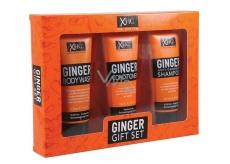 Xpel Ginger šampon na vlasy proti lupům 100 ml + kondicioner na vlasy 100 ml + sprchový gel 100 ml, kosmetická sada