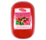 Kappus Jahoda glycerinové toaletní mýdlo s rostlinným olejem 100 g