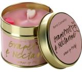 Bomb Cosmetics Grep a nektarinka Vonná přírodní, ručně vyrobena svíčka v plechové dóze hoří až 35 hodin