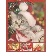 Nekupto Dárková papírová taška střední 23 x 18 x 10 cm Vánoční 1211 30 WBM