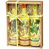 Kitl Syrob Bio Bezový květ sirup 500 ml + Zázvorový sirup 500 ml + Mátový sirup pro domácí limonády 500 ml, dárkové balení