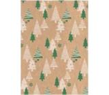 Ditipo Dárkový balicí papír 70 x 200 cm Vánoční KRAFT Zelené, béžové stromky
