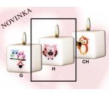 Lima Sovy růžová svíčka s obtiskem bílá krychle 45 x 45 mm 1 kus
