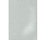 Ditipo Sešit Glitter Collection A4 linkovaný stříbrný 21 x 29,5 cm 3424001
