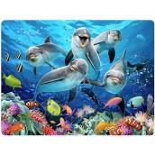 Prime3D pohlednice - Delfíni 16 x 12 cm