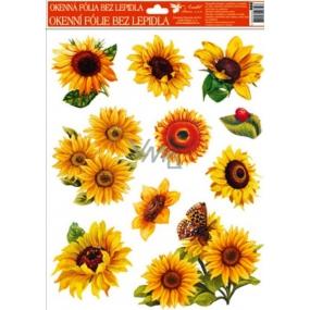 Okenní fólie bez lepidla slunečnice jedna beruška 42 x 30 cm 1 kus