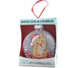 Albi Skleněná vánoční ozdobička se zvířátky - Zrzavá kočka 7,5 cm x 8 cm x 3,6 cm