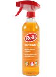 Real Na kuchyně aktivní pěna čisticí prostředek se silným odmašťujícím efektem na mastnotu, připáleniny a usazené nečistoty rozprašovač 550 g