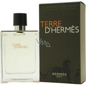 Hermes Terre D Hermes toaletní voda pro muže 100 ml