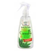 Bione Cosmetics Cannabis sprej na nohy s dezinfekční a změkčující přísadou 260 ml