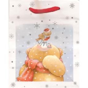 Albi Dárková papírová malá taška 13,5 x 11 x 6 cm Vánoční TS4 96099