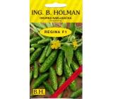 Holman F1 Regina Okurky nakladačky 2,5 g