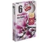 Tea Lights s vůní Magnolia vonné čajové svíčky 6 kusů