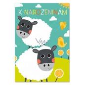 Ditipo Hrací přání k narozeninám Dagmar Patrasová Pásla ovečky 224 x 157 mm