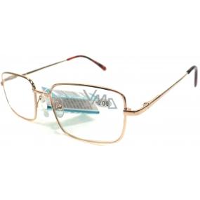Berkeley Čtecí dioptrické brýle +3,0 zlaté kov MC2 1 kus ER5050