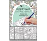 Ditipo Kreativní omalovánky zvířecí království 12 motivů, 24 listů 23 x 16 cm