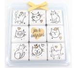 Nekupto Čokoládové puzzle Valentýn Kočky 9 x 5 g WQ 012