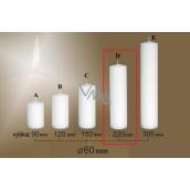 Lima Gastro hladká svíčka bílá válec 60 x 220 mm 1 kus
