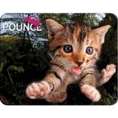 Prime3D magnet - Kotě 9 x 7 cm