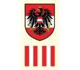 Arch Tetovací obtisky na obličej i tělo Rakousko vlajka 2 motiv