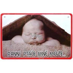 Nekupto Humor po Česku humorná cedulka 028 15 x 10 cm 1 kus