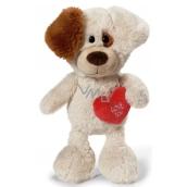 Nici Love You Pes Plyšová hračka nejjemnější plyš 25 cm