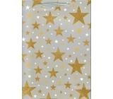 Ditipo Dárková papírová taška Glitter šedá, zlaté hvězdy 26,4 x 13,6 x 32,7 cm QAB