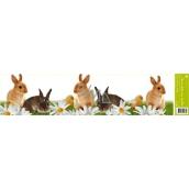 Room Decor Okenní fólie bez lepidla pruh velikonoční zvířátka pruh-králíci