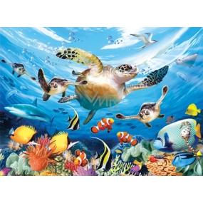 Prime3D plakát Vodní želva - cesta mořské želvy 39,5 x 29,5 cm
