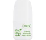 Ziaja Olivové listy kuličkový antiperspirant deodorant roll-on pro ženy 60 ml