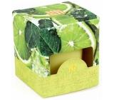 Heart & Home Citrusový gejzír Sojová svíčka bez obalu hoří až 15 hodin 53 g